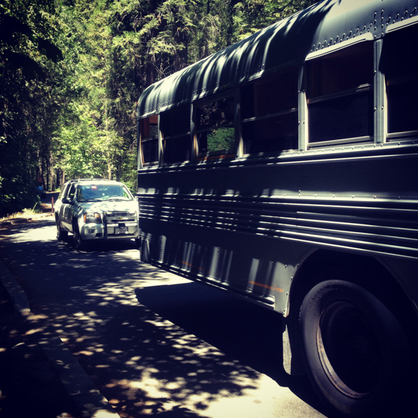 It's not a proper road trip unless you get pulled over. In Yosemite.